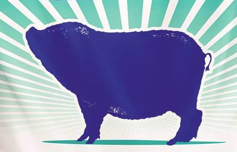 PIG FEED BAG